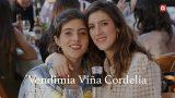 Vendimia Viña Cordelia
