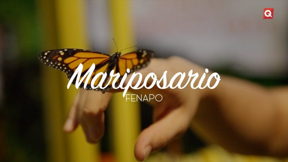 Mariposario FENAPO