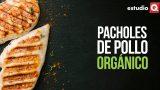 PACHOLES DE POLLO ORGÁNICO