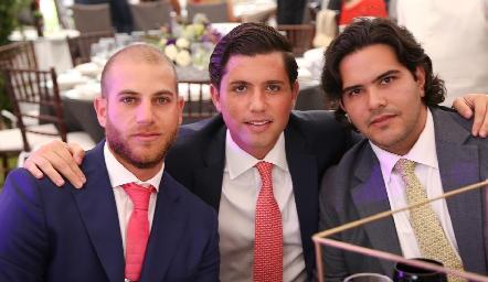 Guillermo Medlich, Gerardo Serrano y Anuar Zarur.