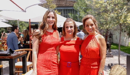 Mariana Lamas, Ana Luisa Torres y Ana Luisa Acosta.