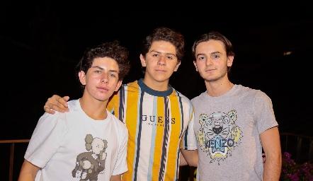 Diego Payán, Patricio Ojeda y Patricio Sarquis.