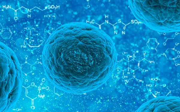 Coronavirus: estos son los mejores alimentos para reforzar tu sistema inmune.