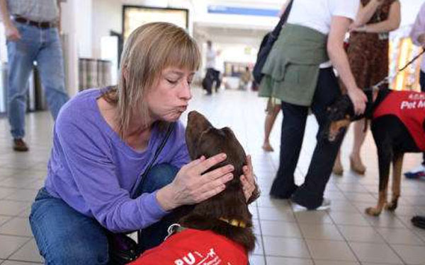 El aeropuerto de Los Ángeles ahora tiene cachorros antiestrés